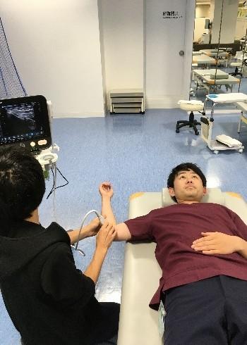 超音波(エコー)を用いた肘の状態チェック